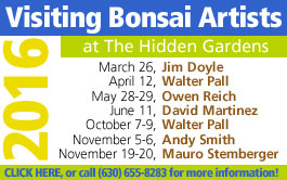 2016 bonsai artists